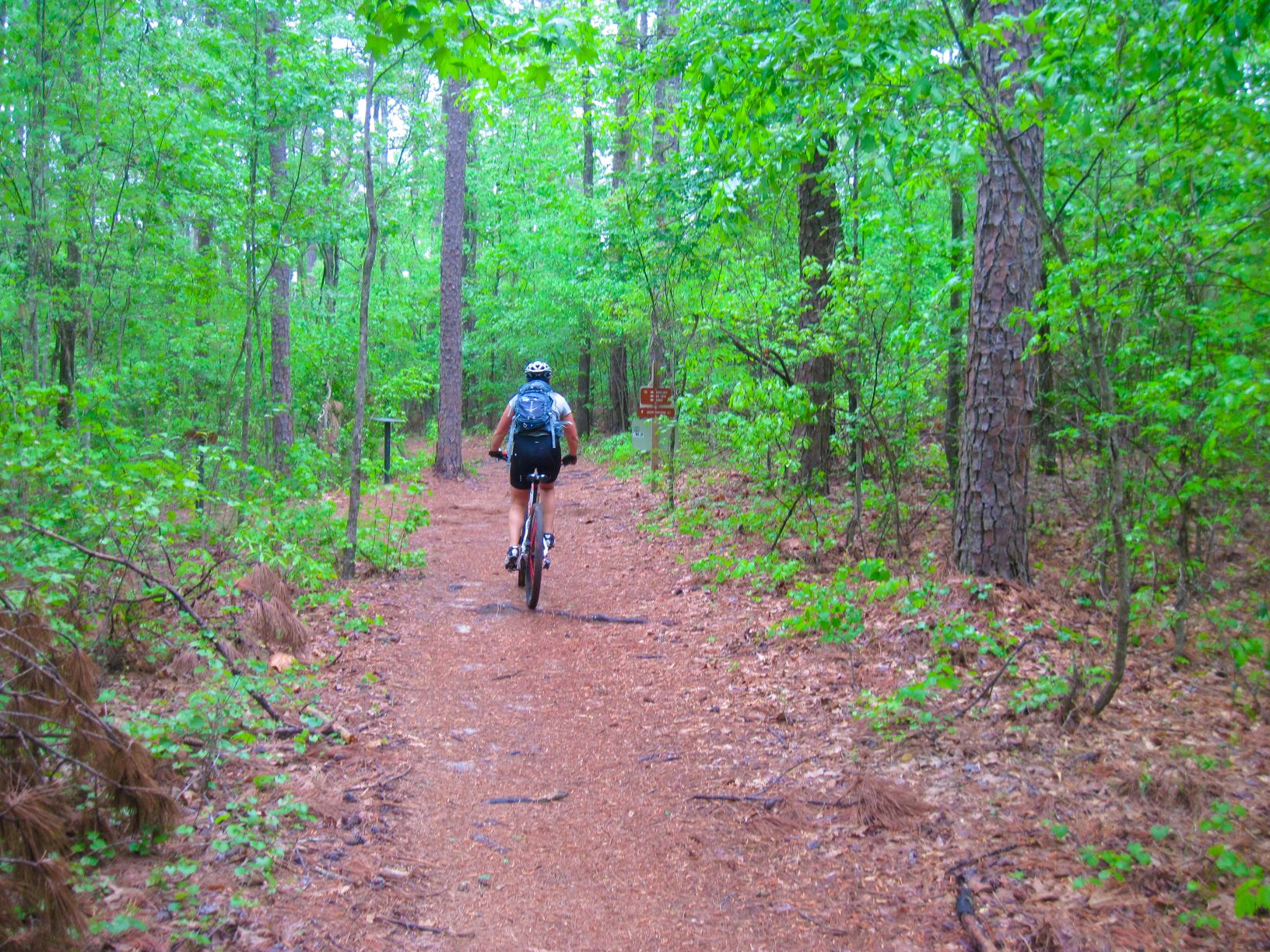 old 96 sc trail mountain bike